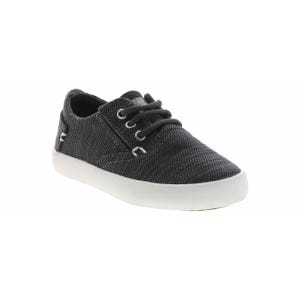 sperry-SCL261798